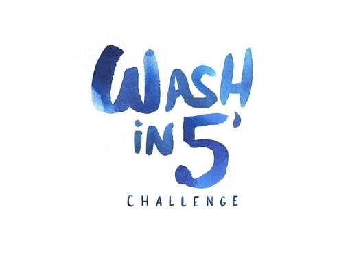 Wash in 5 challenge